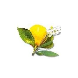 Huiles essentielles Camylle pour hammam - Citron